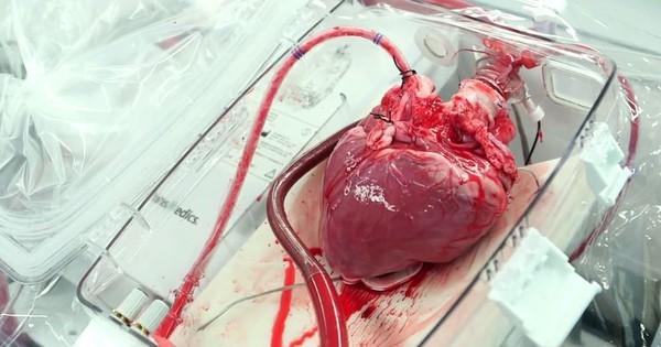 टैक-चैट : एक बक्सा जो मरे हुए व्यक्ति के दिल में जान डाल देता है