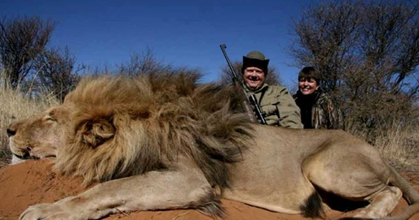 अफ्रीका में शिकार से वन्य जीवों की आबादी बढ़ रही है