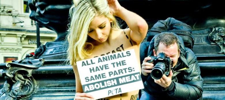 यदि आप शाकाहारी हैं तो जीव हिंसा के लिए ज्यादा जिम्मेदार हैं!