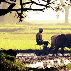 देश के आधे किसान खेती छोड़ देंगे तो क्या होगा?